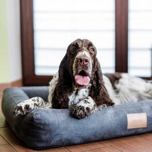 Large Dog Bed - Personalised Hard-Wearing & Durable Dog Bed in Grey Codrua engraved with the name of your dog. Stylish Big Dog Bed available in 3 Dog Bed sizes.